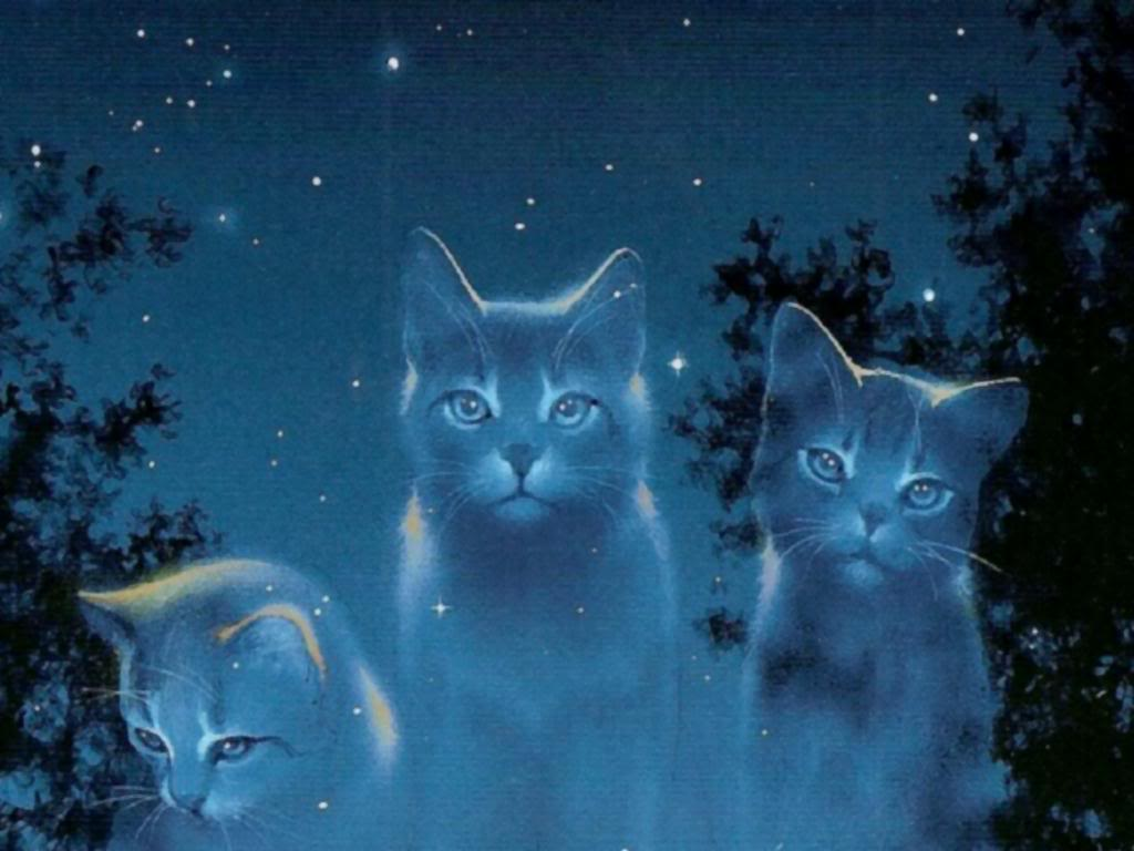 Warrior cats Zone- BlueStar's tale
